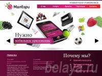 Разработка приложения для мобильных телефонов и КПК